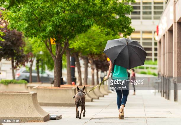 Woman walking her dog on the street in the rain