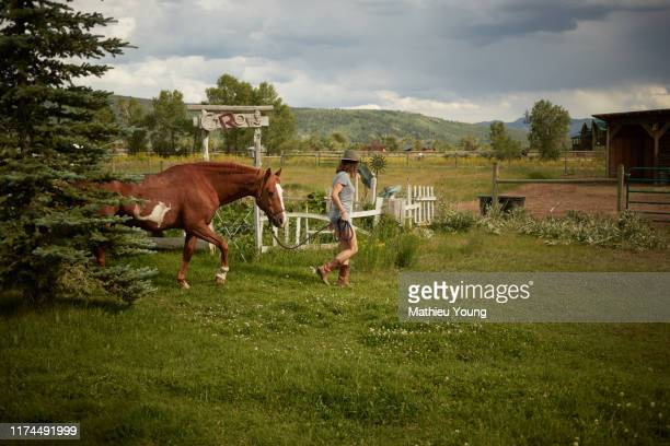 woman walking horse - casa estilo rancho fotografías e imágenes de stock