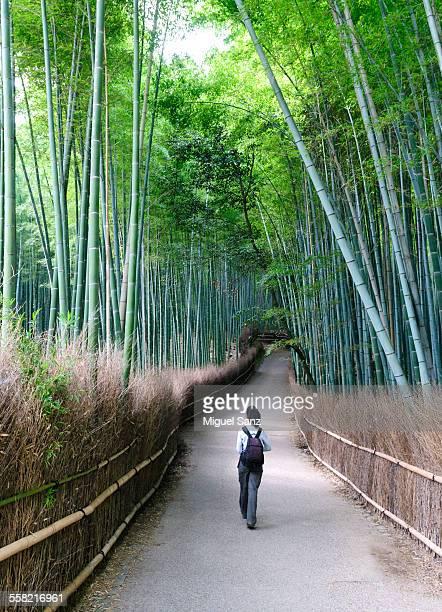 Woman walking in Arashiyama bamboo grove