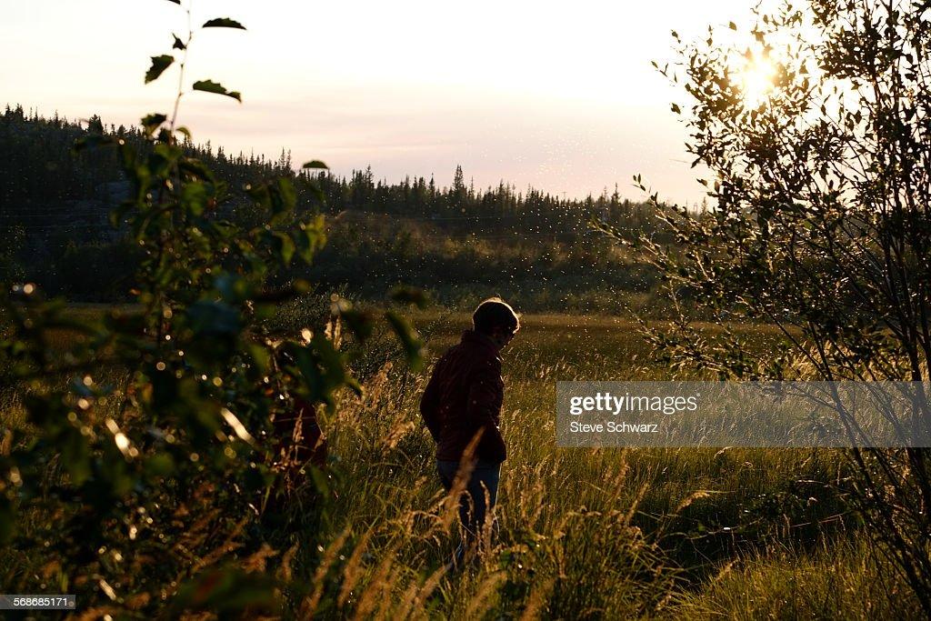 Woman walking in field, bugs in the : Stock Photo