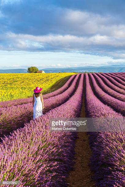 Woman walking in lavender fields in Provence