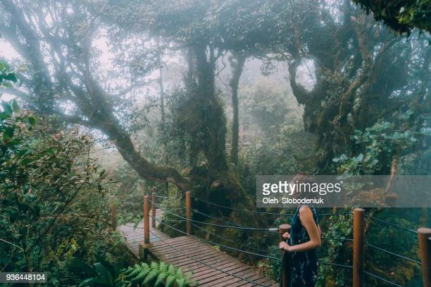 woman walking in mossy forest - cameron young stock photos and pictures