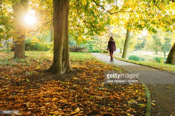 woman walking in park during autumn - marcher photos et images de collection