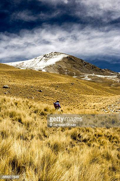 woman walking in the mountains of condoriri - bolivia stockfoto's en -beelden