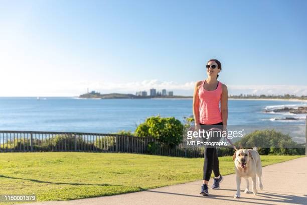 woman walking labrador - approaching stock pictures, royalty-free photos & images