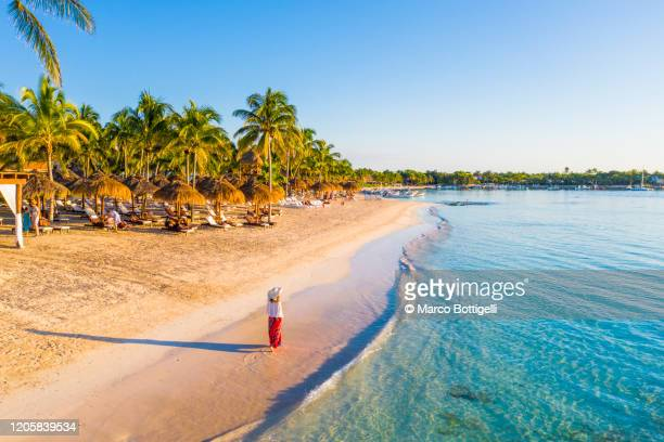 woman walking on caribbean beach in akumal, mexico - quintana roo stock pictures, royalty-free photos & images