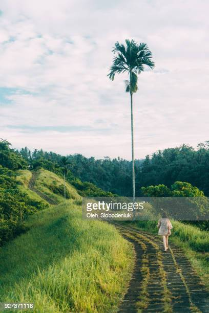 Woman walking on  green hill in Bali  at morning