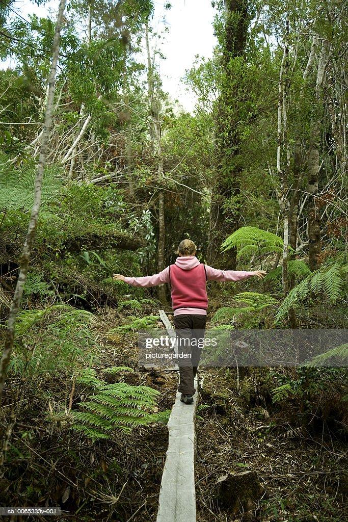 Woman walking on narrow footbridge made up of tree trunk, rear view : Foto stock