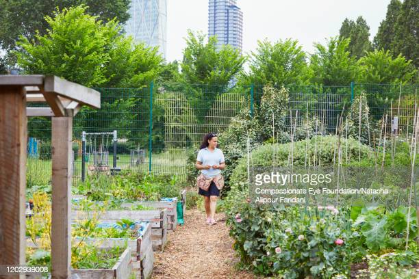 woman walking on path in community garden - compassionate eye foundation stock pictures, royalty-free photos & images