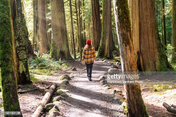 woman walking on the trail to tamolitch falls - blue pools, linn county, or, us. - natural beauty people stock pictures, royalty-free photos & images