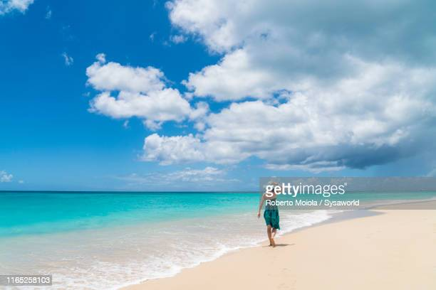 woman walking on white sand beach, caribbean - islas mauricio fotografías e imágenes de stock