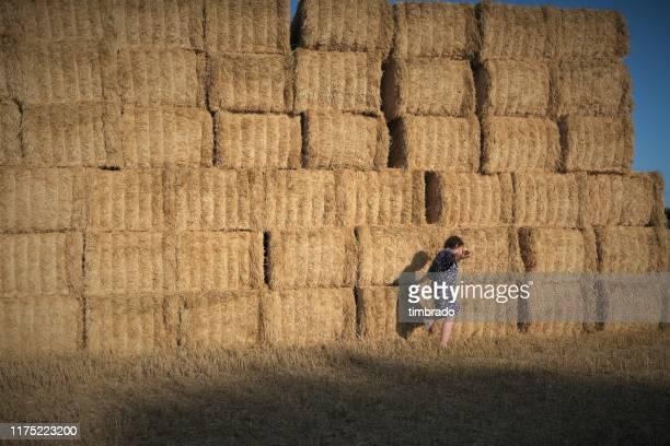 woman walking past a stack of hay bales in a field, deux-sevres, nouvelle aquitaine, france - deux sevres fotografías e imágenes de stock