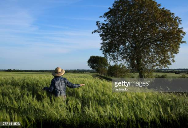 Woman walking through a wheat field, Cherveux, Niort, France