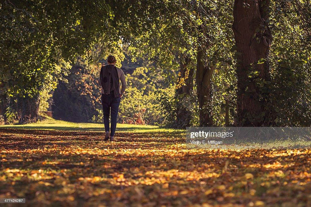 Woman walking through autumnal woodland : Stock Photo