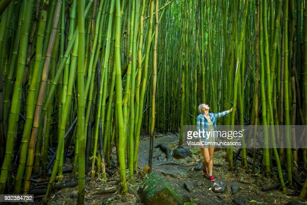woman walking through bamboo forest on maui. - bamboo stock photos and pictures