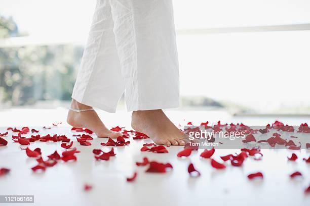 花びらを渡る女性階 - 花びら ストックフォトと画像