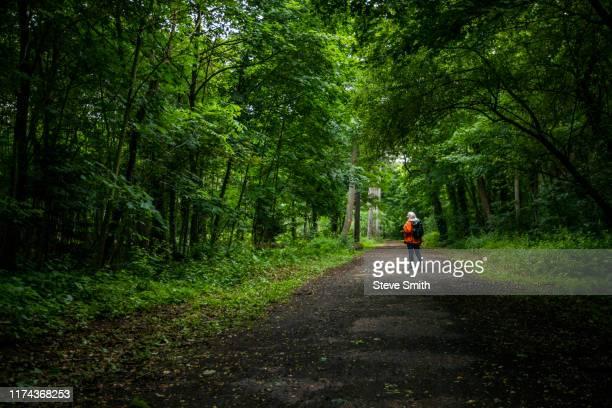 woman walking through forest - île de france photos et images de collection