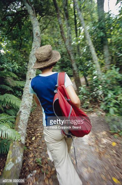 woman walking through forest - heidi coppock beard stock pictures, royalty-free photos & images