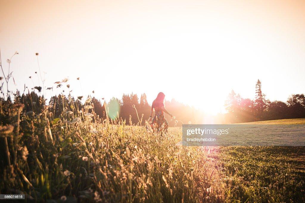 Woman walking through meadow at sunset : Stock Photo