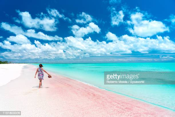 woman walking through  shallow crystal water, caribbean - バハマ ストックフォトと画像