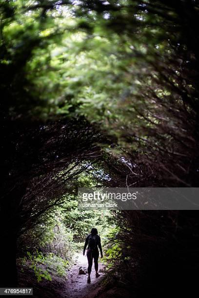 Woman walking through trees