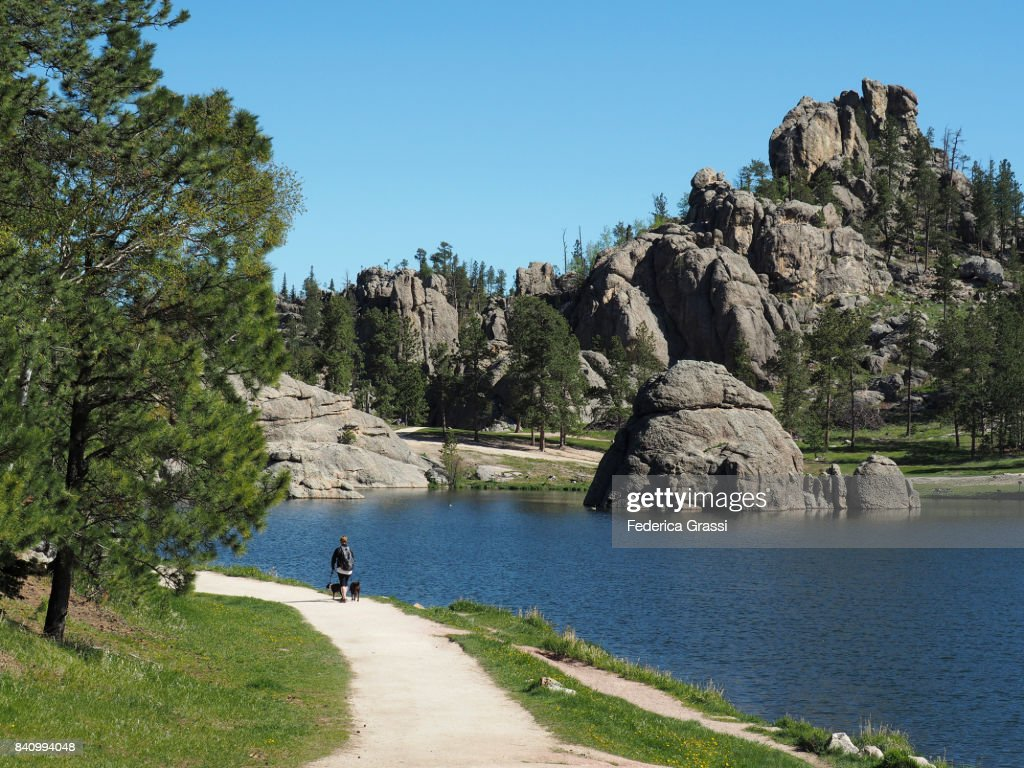 Woman Walking Two Dogs Along The Shore Of Sylvan Lake, South Dakota : Stock Photo
