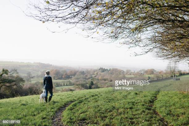 A woman walking with a dog on high ground overlooking the countryside.