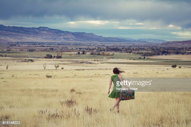 woman walking with a suitcase searching for home. - the hobbit: an unexpected journey stock pictures, royalty-free photos & images