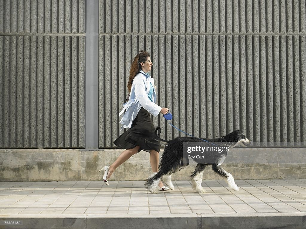 Woman walking with Afghan Hound down pavement in a breeze, Alicante, Spain, : Stock Photo
