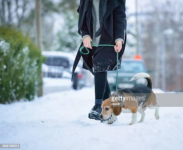 Woman walking with beagle dog on winter walk path