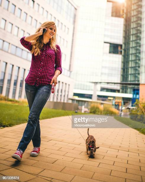 woman walking with dog in city street - approaching stock pictures, royalty-free photos & images