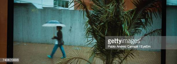 woman walking with umbrella - carvajal ストックフォトと画像