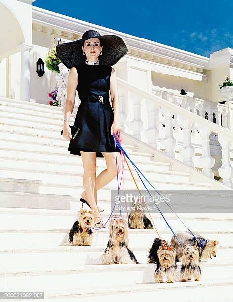 Woman walking Yorkshire Terriers down steps, portrait