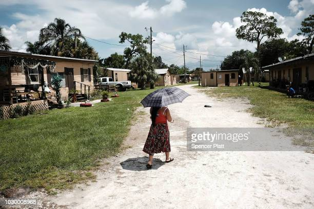 A woman walks along a street in the rural agriculture community of Immokalee on September 9 2018 in Immokalee Florida The Immokalee community which...