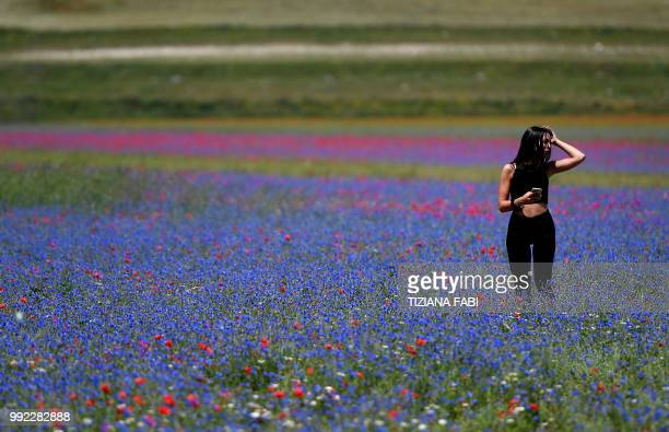 A woman walks amongst blooming flowers near Castelluccio a small village in central Italys Umbria region on July 5 2018