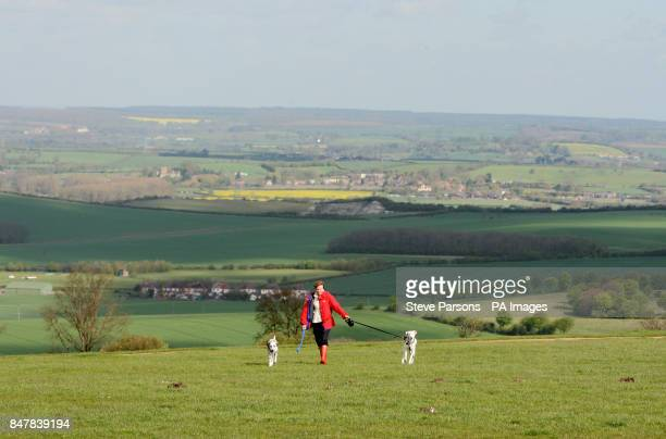 60 Top Dunstable Downs Pictures, Photos and Images - Getty