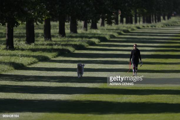 A woman walks her dog along the Long Walk in Windsor on May 17 2018 two days before the royal wedding of Prince Harry and Meghan Markle Britain's...