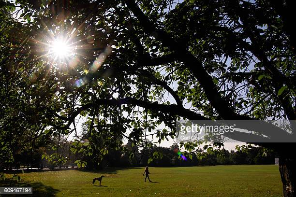 A woman walks her dog in Greenwich Park on September 21 2016 in London England Today marks final day of summer as the autumn equinox arrives on...