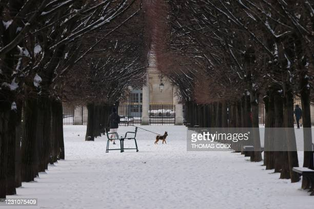 Woman walks her dog in the snow-covered Jardin du Palais Royal, following a light overnight snowfall in Paris on February 10, 2021.