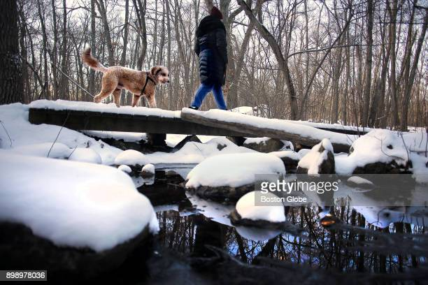 A woman walks her dog near Hammond Pond after a fresh snowfall blanketed the Webster Conservation Area in Newton MA on Dec 26 2017