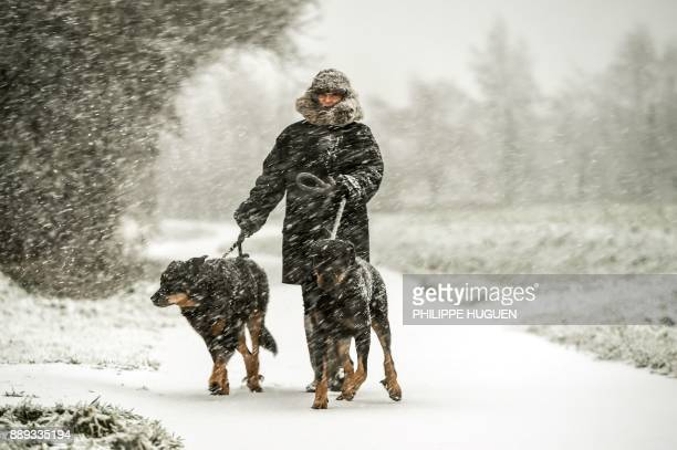 A woman walks her dogs on a snowcovered road in Godewaersvelde during snowfalls on December 10 2017 / AFP PHOTO / PHILIPPE HUGUEN