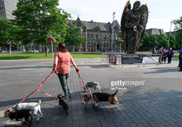 A woman walks her dogs past the Knife Angel sculpture installed in the Centre Square in Middlesbrough on August 06 2019 in Middlesbrough England The...