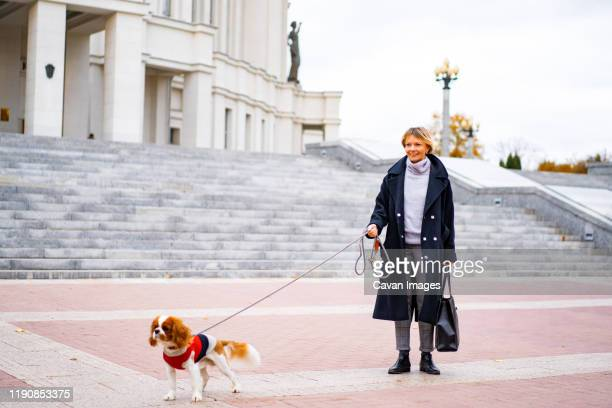 a woman walks in the city with a cavalier king charles spaniel dog. - mujeres de mediana edad fotografías e imágenes de stock
