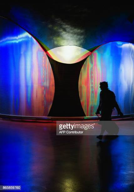 A woman walks next to 'Moaritisk Absorbent' by artist Mikael Paulin located at the new city line station of Stockholm City on October 24 2017...