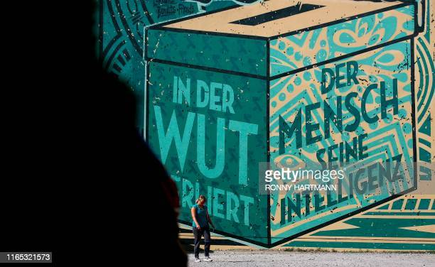 """Woman walks past a detail from a graffito on a house, depicting a ballot box reading """"In anger, man loses his intelligence"""" during state elections in..."""