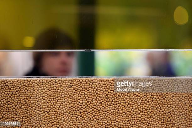 A woman walks past displayed soy beans and soy oil during the world organic trade fair BioFach 2011on February 16 2011 in Nuremberg Germany Some 2500...