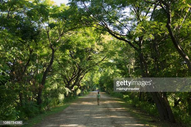 Woman walks shady Constanera Sur Ecological Reserve Buenos Aires Argentina