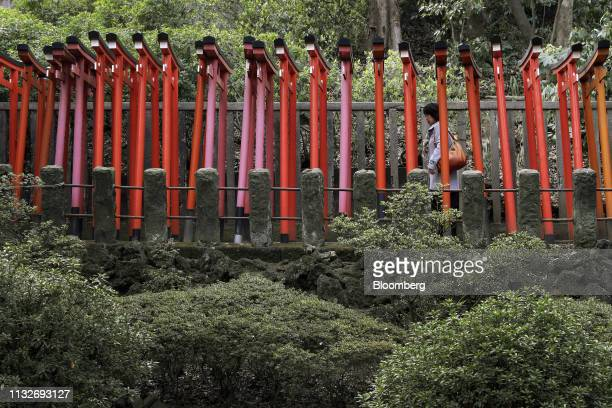 A woman walks through the Torii gate tunnel to the Otome Inari Shrine at the temple grounds of the Nezu Shrine in the Yanesen district of Tokyo Japan...