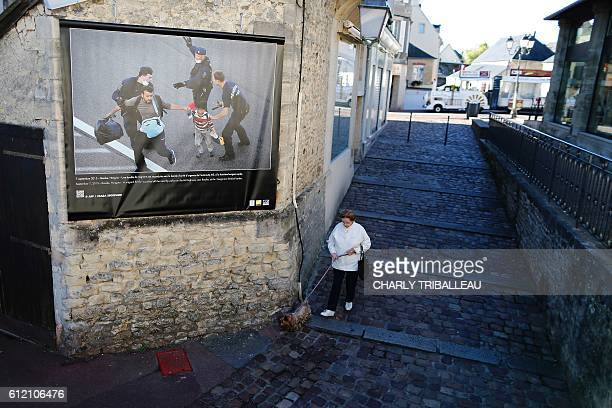 Woman walks with her dog past a picture by AFP photographer Csaba Segesvari displayed in a street of Bayeux, northwestern France, on October 3, 2016...