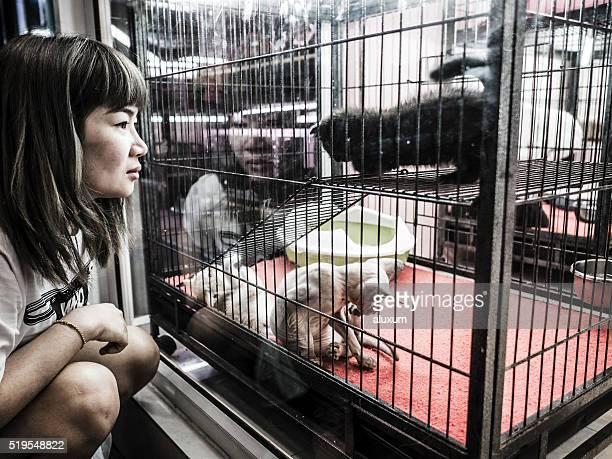 Femme regardant les chats à animalerie marché de Chatuchak